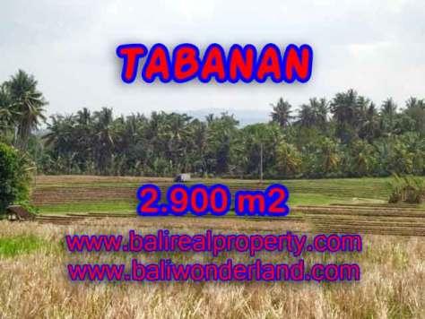 Kesempatan Investasi Properti di Bali - Jual Tanah murah di TABANAN TJTB136