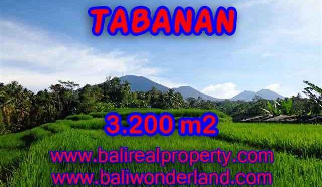 TANAH DIJUAL DI TABANAN BALI TJTB118