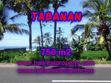 DIJUAL TANAH DI TABANAN MURAH TJTB105 - INVESTASI PROPERTY DI BALI