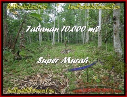 JUAL TANAH di TABANAN BALI 10.000 m2  Gunung dan Kota Denpasar