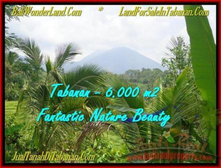 DIJUAL TANAH di TABANAN BALI 60 Are di Tabanan Penebel