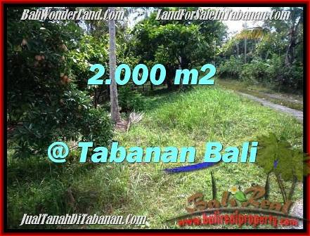 TANAH di TABANAN JUAL 2,000 m2 View Kebun