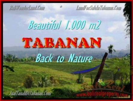 TANAH MURAH di TABANAN BALI 1.000 m2  View sawah dan laut