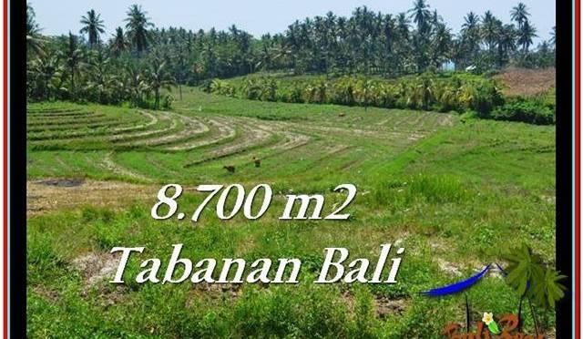 TANAH MURAH JUAL di TABANAN BALI 8,700 m2  View Laut dan Gunung