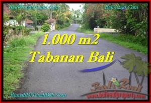 JUAL TANAH MURAH di TABANAN BALI 10 Are View Kebun