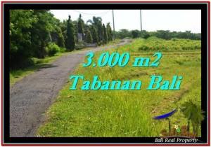 TANAH JUAL MURAH  TABANAN 30 Are View sawah, sungai dan laut