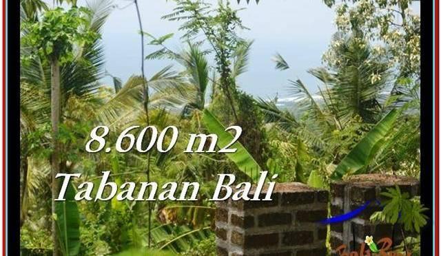 TANAH DIJUAL MURAH di TABANAN 8,600 m2 di Tabanan Selemadeg