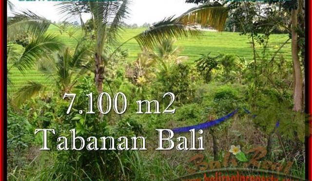DIJUAL TANAH di TABANAN Untuk INVESTASI TJTB240