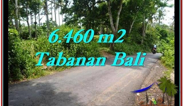 JUAL TANAH MURAH di TABANAN BALI 6,460 m2 di Tabanan Selemadeg
