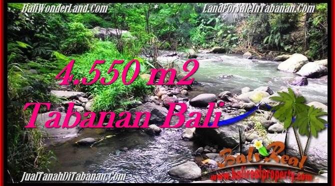 TANAH DIJUAL MURAH di TABANAN BALI 4,550 m2 di Tabanan Penebel
