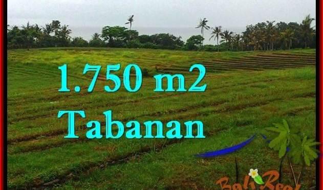 TANAH DIJUAL MURAH di TABANAN 1,750 m2 di Tabanan Selemadeg