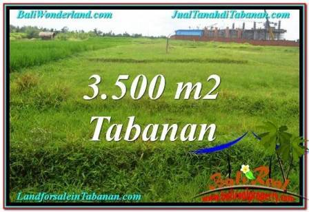 JUAL MURAH TANAH di TABANAN 3,500 m2 View Sawah