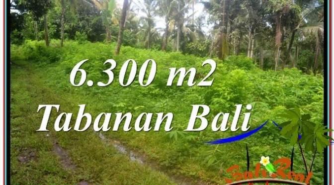 DIJUAL MURAH TANAH di TABANAN Untuk INVESTASI TJTB313
