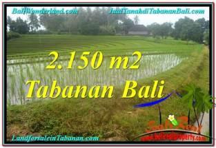 TANAH MURAH JUAL TABANAN 2,150 m2 View gunung dan sawah