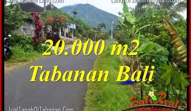 TANAH DIJUAL di TABANAN 20,000 m2 View gunung dan sawah
