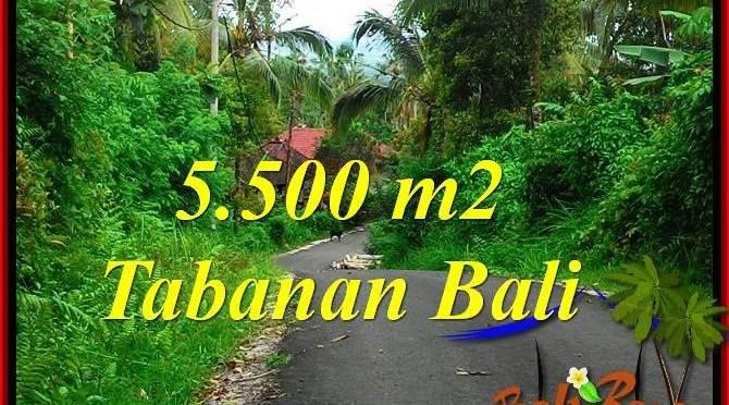 TANAH MURAH di TABANAN JUAL 55 Are View Laut dan Gunung