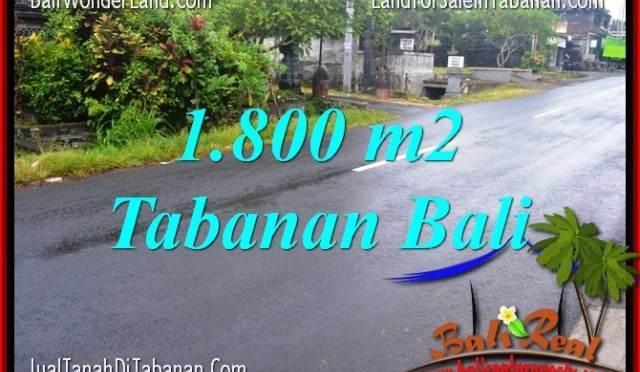 TANAH MURAH JUAL di TABANAN BALI 18 Are View sawah
