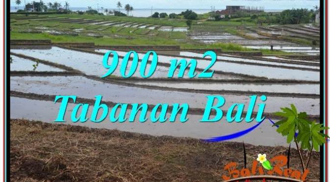DIJUAL MURAH TANAH di TABANAN TJTB308