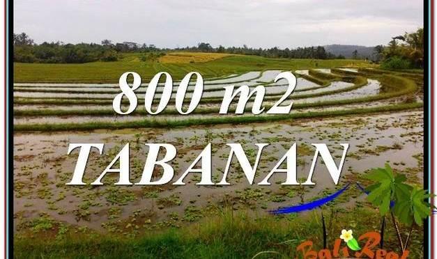 JUAL MURAH TANAH di TABANAN 8 Are View laut dan sawah
