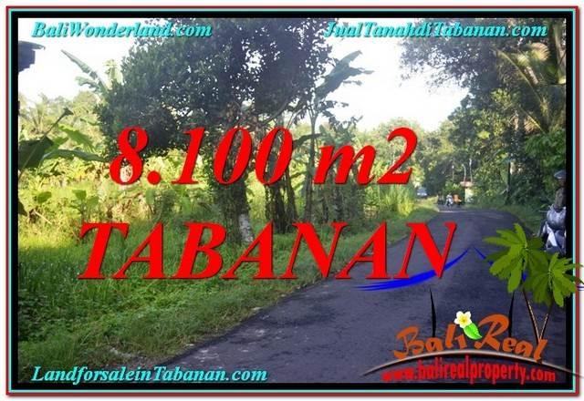 TANAH MURAH di TABANAN JUAL 8,100 m2 View Kebun