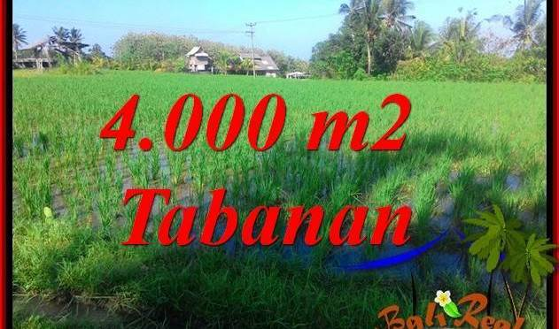 DIJUAL MURAH TANAH di TABANAN BALI 40 Are di Tabanan Selemadeg