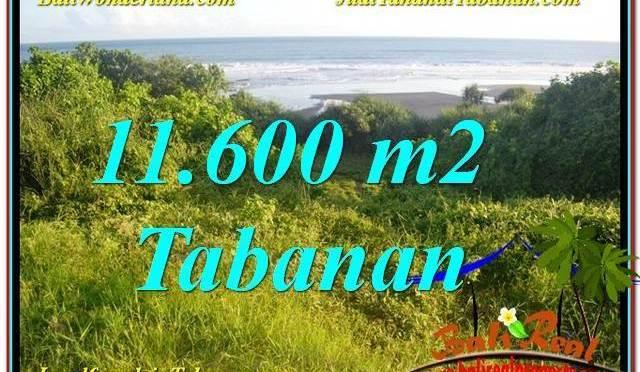 TANAH MURAH di TABANAN JUAL 11,600 m2  View Laut, Gunung dan sawah