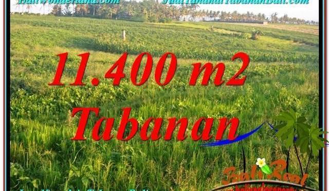 TANAH DIJUAL di TABANAN 114 Are di Tabanan Selemadeg