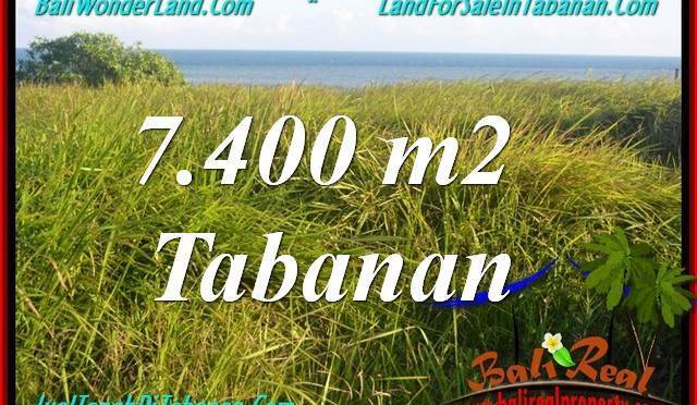 TANAH di TABANAN DIJUAL MURAH 7,400 m2 di Tabanan Selemadeg