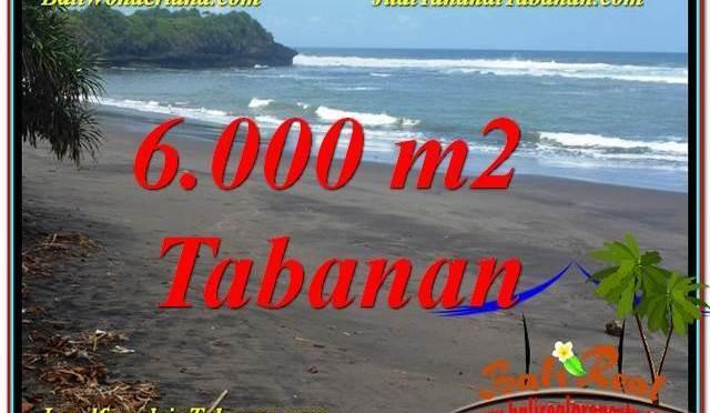 JUAL TANAH MURAH di TABANAN BALI 6,000 m2  View laut dan sawah