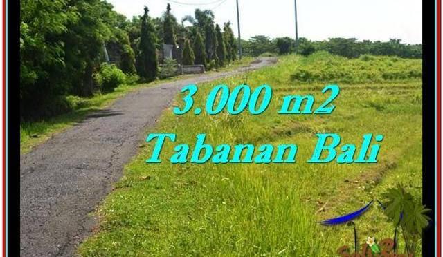 JUAL TANAH MURAH di TABANAN 3,000 m2  View sawah, sungai dan laut