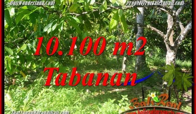 JUAL MURAH TANAH di TABANAN BALI 10,100 m2  View kebun