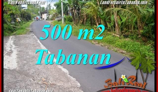 JUAL TANAH MURAH di TABANAN 500 m2 di Tabanan Kerambitan