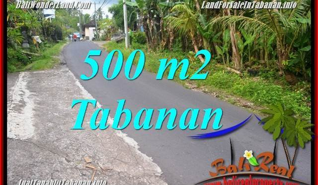 TANAH di TABANAN DIJUAL MURAH 500 m2 di Tabanan Kerambitan