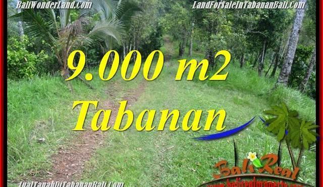 JUAL TANAH di TABANAN Untuk INVESTASI TJTB364
