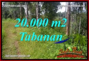 DIJUAL TANAH MURAH di TABANAN BALI 200 Are di Tabanan Selemadeg Timur