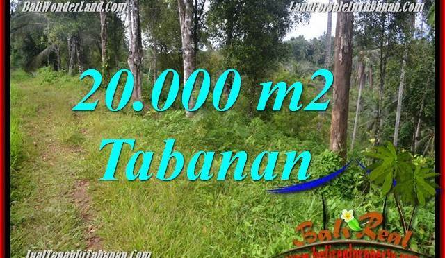 TANAH MURAH di TABANAN 200 Are View kebun