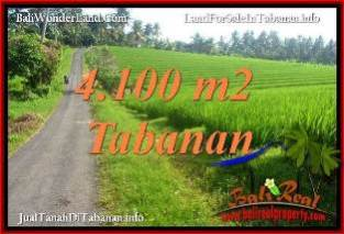 TANAH DIJUAL di TABANAN BALI 4,100 m2 VIEW SAWAH, LINGKUNGAN VILLA