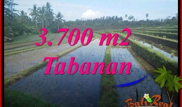 TANAH di TABANAN DIJUAL 37 Are VIEW LAUT DAN SAWAH