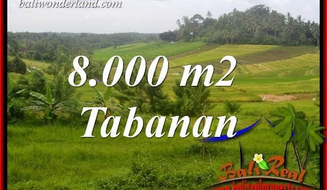 Tanah Murah di Tabanan jual 80 Are View Sawah