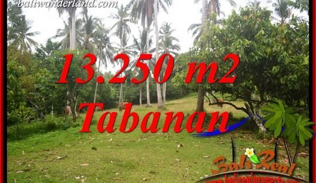 JUAL Tanah Murah di Tabanan 13,250 m2 di Tabanan Selemadeg