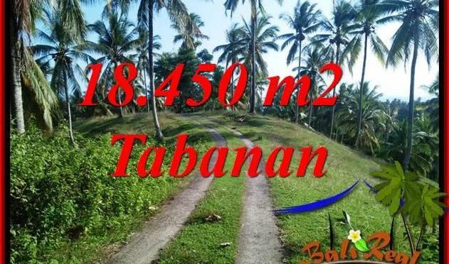 Dijual Murah Tanah di Tabanan 184.5 Are di Tabanan Selemadeg