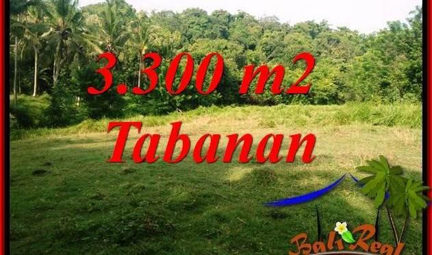 Tanah Dijual di Tabanan Bali 33 Are View Kebun dan Sungai