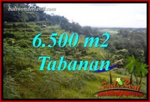Tanah di Tabanan Dijual Murah TJTB416