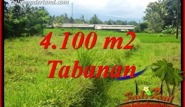 JUAL Tanah di Tabanan 41 are View Sawah, Gunung dan Sungai Kecil
