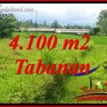 Tanah di Tabanan Dijual Murah 9,600 m2 di Tabanan Penebel