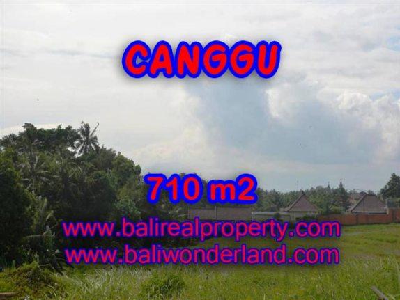 Tanah di Canggu Bali dijual 710 m2 view sawah dan sungai di Canggu Brawa