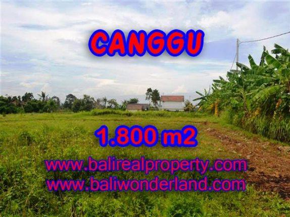 TANAH DI CANGGU MURAH DIJUAL TJCG134 - INVESTASI PROPERTY DI BALI