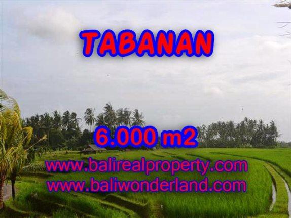 TANAH DIJUAL DI BALI, MURAH DI TABANAN RP 360.000 / M2 - TJTB093 - INVESTASI PROPERTY DI BALI