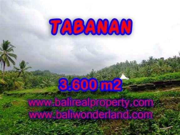 Murah ! Tanah di TABANAN Bali Dijual TJTB117 - investasi property di Bali