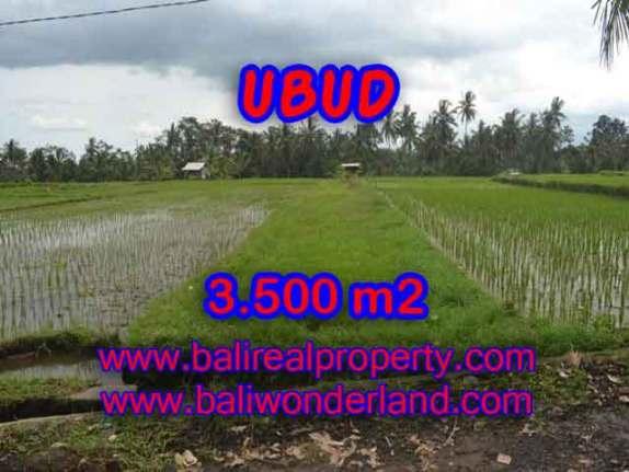 JUAL TANAH DI UBUD RP 2.200.000 / M2 - TJUB395